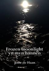 haanjossede-frozenmoonlight